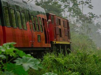 Tren de Hielo