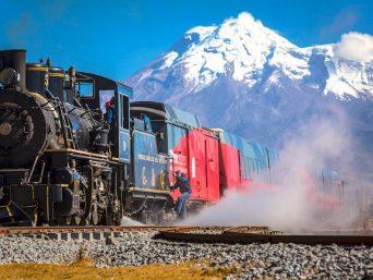 Tren de los Volcanes